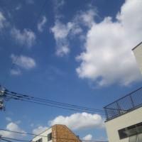 SH3E0454.jpg