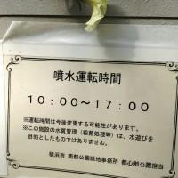 00260001.JPG